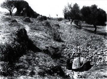 Πηγή: Antonino Di Vita, Η Γόρτυνα της Κρήτης. Δεκαπέντε αιώνες αστικού βίου, Βικελαία Δημοτική Βιβλιοθήκη, Ηράκλειο 2015
